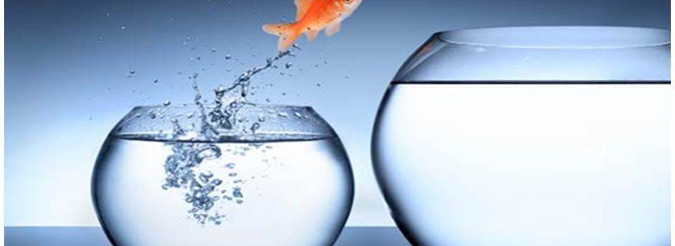 Taller intensivo: Acompañando el cambio